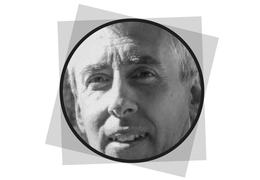 ing. Enrico Bonizzoli